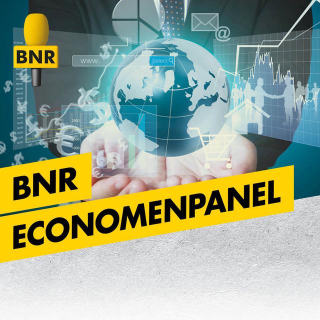 BNR Economenpanel | BNR