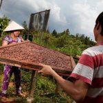 Makers Series 5: Marou, Faiseurs de Chocolat