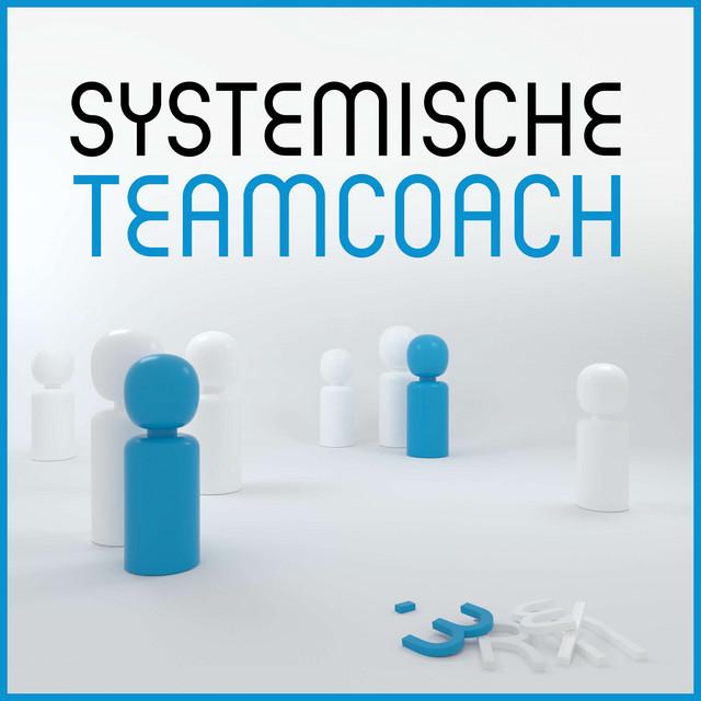 Systemische Teamcoach