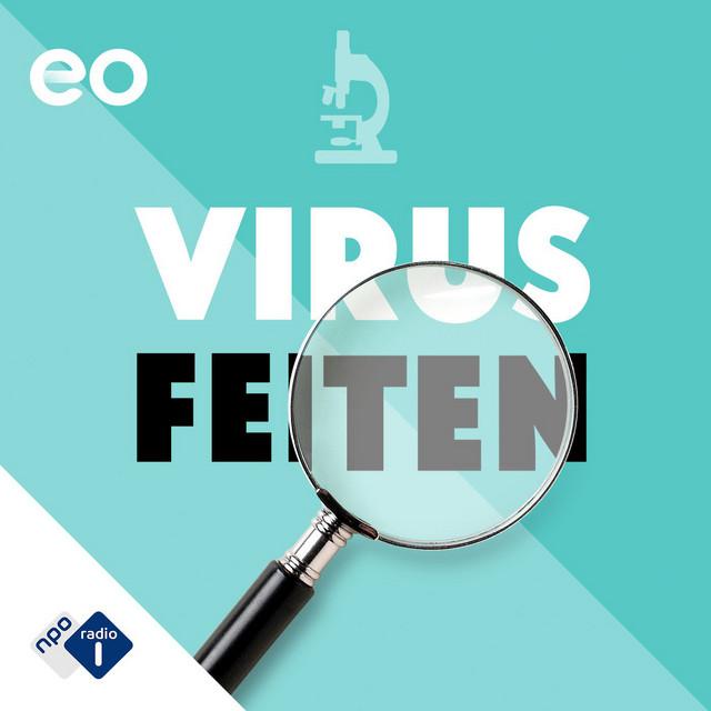 Virusfeiten