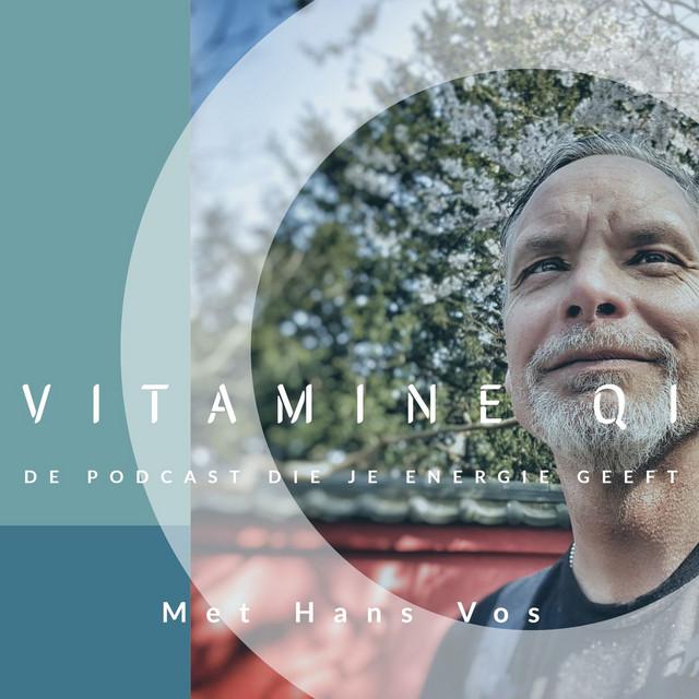 VITAMINE QI - de podcast die je energie geeft