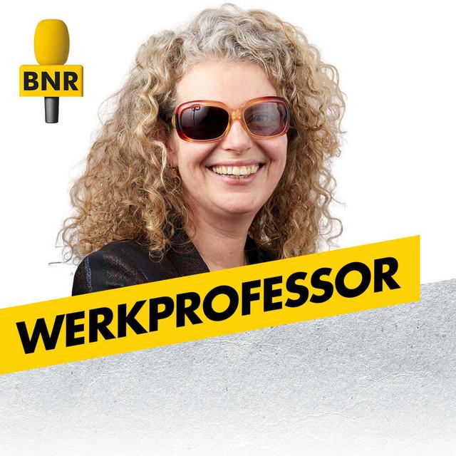 Werkprofessor | BNR