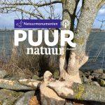 Puur Natuur: Boswachter Gerwin Geertse over de struinnatuur op Tiengemeten